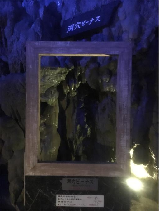 龍泉洞 洞穴ヴィーナス